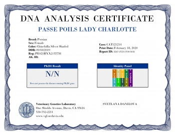 Charlotte-VGL-Test_Report