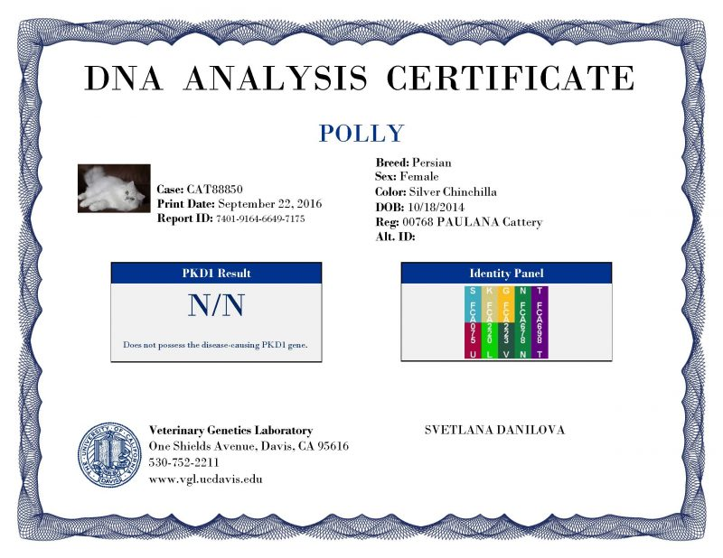 polly-certificate-vgl_test_reports